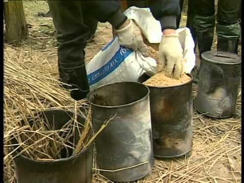 VTV2-Ứng dụng than sinh học trong canh tác nông nghiệp