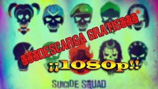 Descargar Película Completa Suicide Squad  En Español Latino BluRay HD