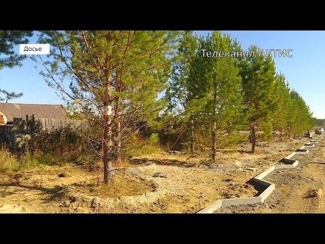 В Ангарске высадят больше двух тысяч деревьев