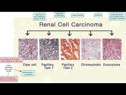 Wart papilloma cervix smear