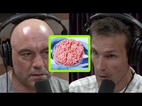 Joe Rogan a Chris Kresser o problematice falešného masa