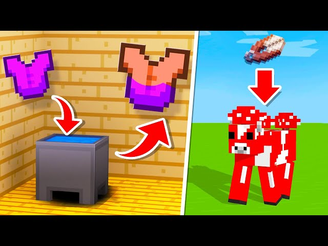 10 Forgotten Minecraft Features That You Didn't Know