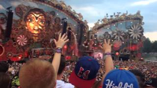 Tomorrowland 2014 - avicii (shot at night remix)