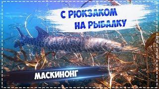 Рыбалка великие озера 3 6 количество
