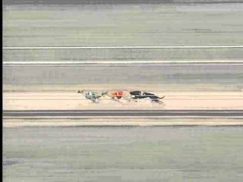 Race 74