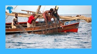 Lamu fishermen say how the coronavirus has affected their lobster