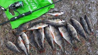 Места для рыбалки на верхней москва реке