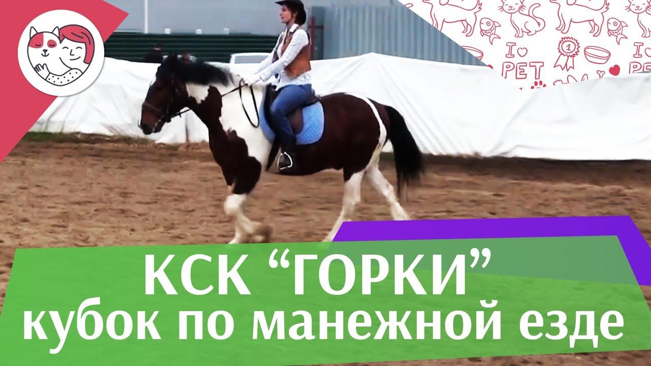 Летний кубок КСК Горки по манежной езде КЮР часть 22 на ilikepet