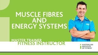 Muscle Fibres and Energy Systems