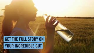 Are probiotics the answer?   World leading research   Fit Planet  