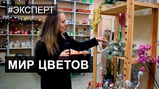 Мир Цветов: Как оформить подарок на любой праздник. Ярославль