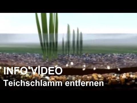Teichschlamm entfernen mit Teichschlammentferner - Video: Teichschlamm beseitigen