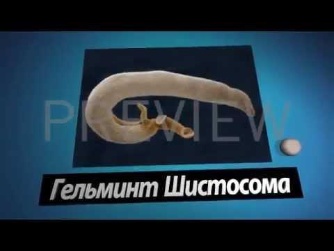 Комплекс против простатита