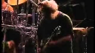 "Grateful Dead Perform ""Foolish Heart"" RFK 90  (NK)"