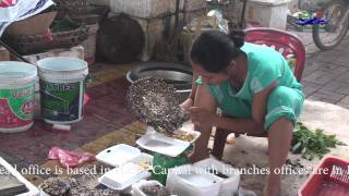 preview picture of video 'Xanh Market - Cao Bang Town Vietnam - Vietnam Local Market'
