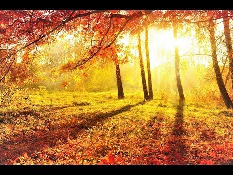 Что такое осень на английском (What is autumn)