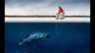 Рыбалка в еткуле челябинской области