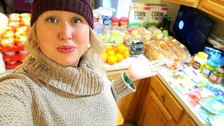 🍎BIG FAMILY Aldi Grocery Haul on a BUDGET 2019!   FAMILY OF 10