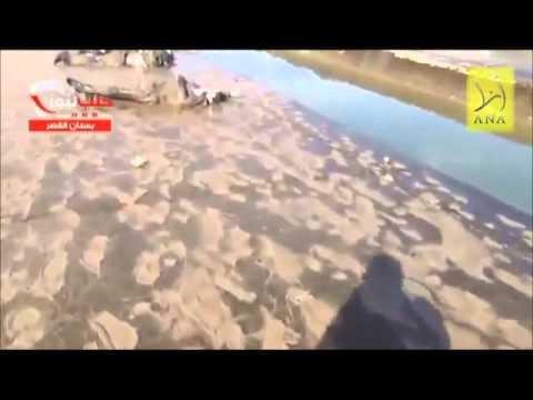 Video di sesso gratis giovane russo in linea