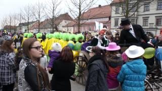 preview picture of video 'Tirschenreuth Faschingszug 2014'