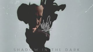Mike Shinoda - Shadow In The Dark