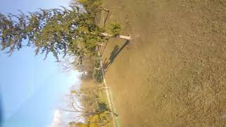 Funday afternoon (FPV freestyle)
