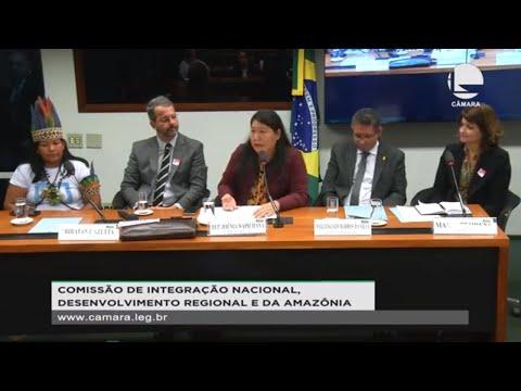 Integração Nacional - Importância da indústria farmacêutica amazônica - 05/12/19