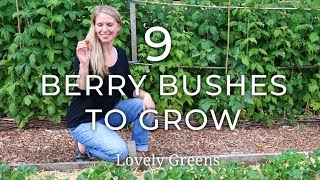 9 Types Of Berry Bushes To Grow In Your Garden