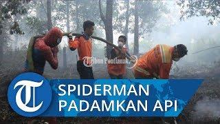 Aksi Seorang Warga Turut Bantu Padamkan Karhutla, Gunakan Baju Spiderman