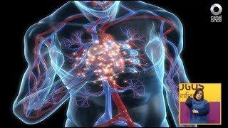 Diálogos en confianza (Salud) - ¿A quién afecta la Hipertensión Arterial Pulmonar?