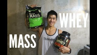 WHEY PROTEIN or MASS GAINER? (Tips for Beginner)