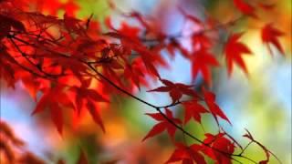 Outono / Chimarruts