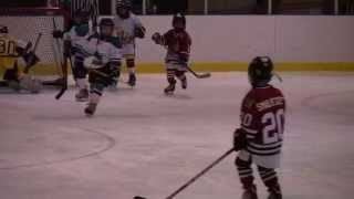 2012-04-29 - 2004 Minor Novice Select All Star Game.avi