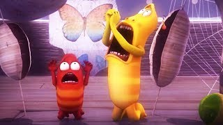 LARVA - HUMAN HORROR | Cartoon Movie | Videos For Kids | Larva Cartoon | LARVA Official
