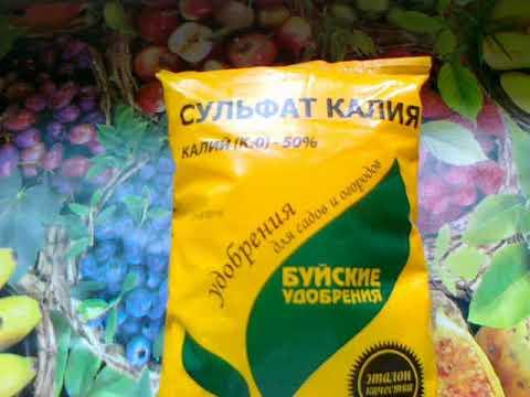Сульфат калия или Сернокислый калий. Для повышения урожайности и улучшения вкуса плодов.