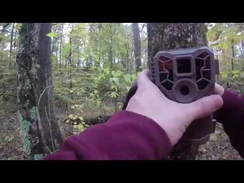 Stealth Cam PX28NG Trail camera review / Set - Up