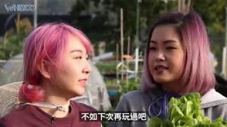 |🚺🈴大紫大紅變村姑🥦🍆| 包包Simon農耕初體驗👩🌾
