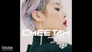 Cheetah - Lady
