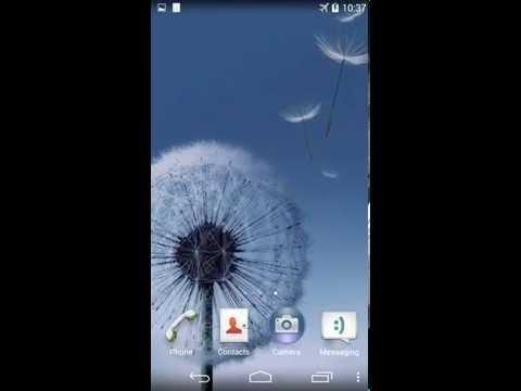 Video of Dandelion Live Wallpaper