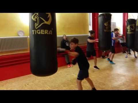 CHAMP Sportakademie - Kinder- & Jugendboxen 15s Schnellkraft an Boxsäcken