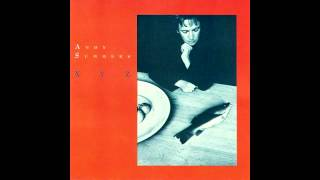 Andy Summers ~ XYZ