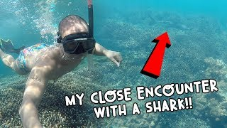 MY CLOSE ENCOUNTER WITH A SHARK (SRI LANKA)! | Vlog #104