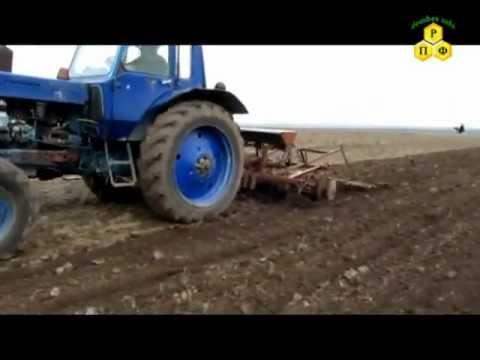Подготовка почвы и посев медоносов