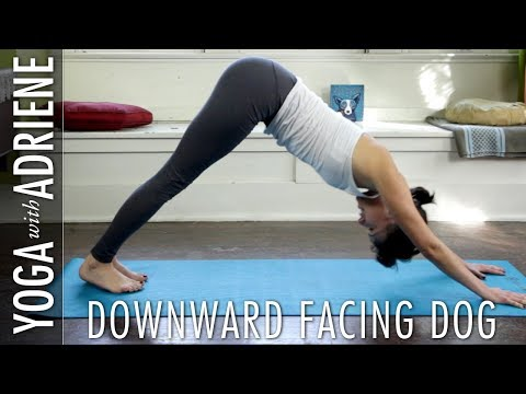Downward Dog - Downward Facing Dog Yoga Pose