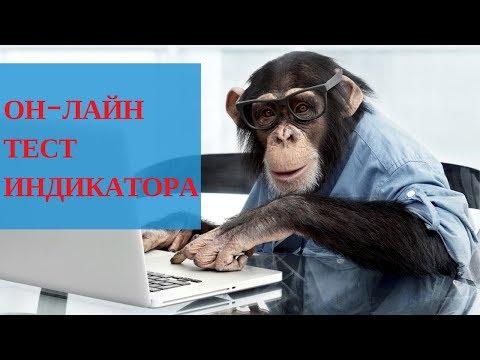 Конструктор опционов онлайн