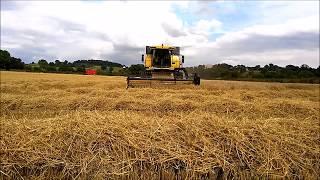 Irish Grain Harvet Borris Co Carlow, 2016 -New Holland CS640 Combine