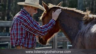 Listening to the Horse Documentary Part 2 Episode 2 Preview
