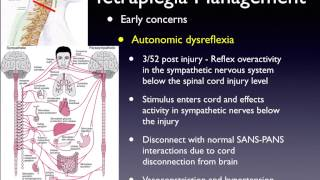 Spinal Cord Injury 2: Early Management and Complications