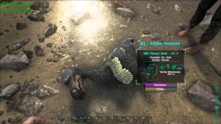 Ark How and Why to Tame a Dodo