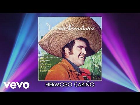 Vicente Fernández - Hermoso Cariño (Audio)